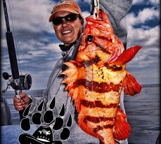 World Record Tiger Rockfish